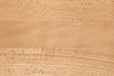 Széltoldott bükk fa járólapok
